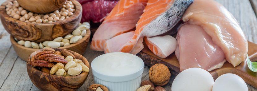eiweiß protein und aminosaeure